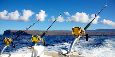 Photo on textile frame Fishing Deep sea fishing in Hawaii