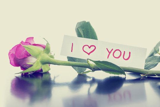 Pink Valentines rose with handwritten message