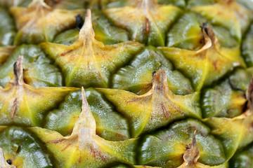 Background of pineapple skin.