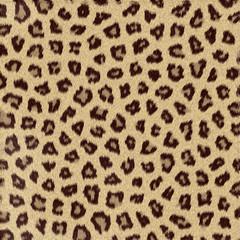 Texture di Leopardo, gheopardo, fondo astratto