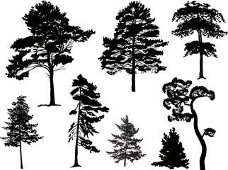 eight black trees set isolated on white