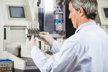 Scientist Examining Urine Samples In Lab
