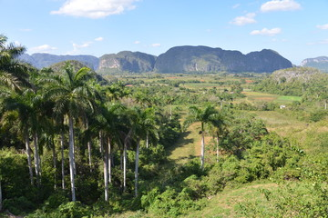 Valley of Vinales, Cuba
