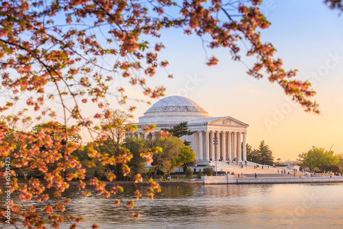 Wall mural the Jefferson Memorial during the Cherry Blossom Festival in DC