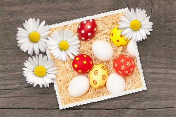 Ostergrüße, Frohe Ostern, Ostereier, Gänseblümchen