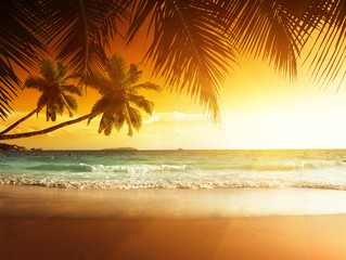 Wall Mural - sunset on the beach of caribbean sea