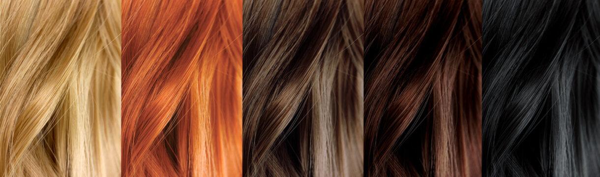Hair Color Samples