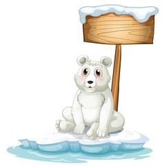 A sad bear above the iceberg with an empty signboard