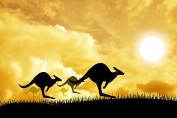 Kangaroos jumping over the sunset