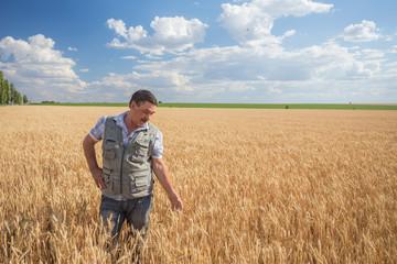 Happy smiling caucasian  old farmer standing in wheat fields