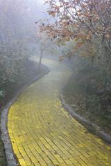 Yellow brick road Beech Mountain, North Carolina