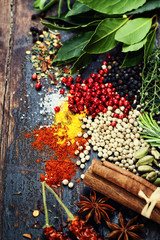 Wall Mural - Spices and herbs