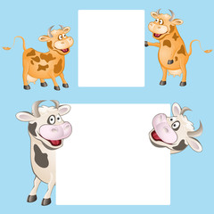 funny cow with posters