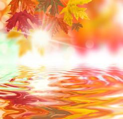 bunter Herbsthintergrund wasser spiegelt baum