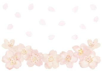 桜の花と花吹雪