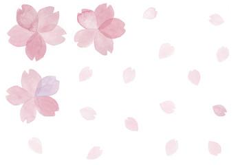 桜の花と舞う花びら