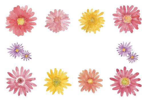 ガーベラの花のセット