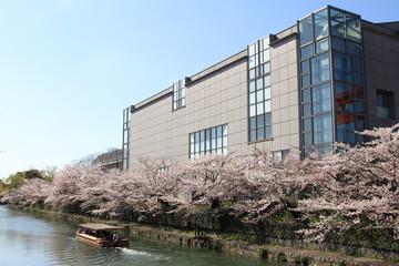 Wall Mural - 岡崎桜回廊ライトアップ&十石舟めぐり