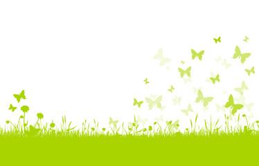 Frühling Blumenwiese