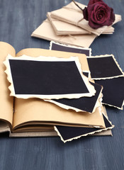 Blank old photos in album and dried flower,