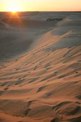 Big sand dunes in Sahara