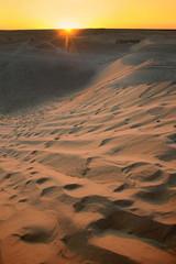 Sunset with Sahara dunes