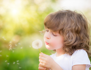 Obraz Happy child blowing dandelion - fototapety do salonu