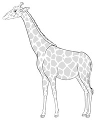 A sketch of a giraffe