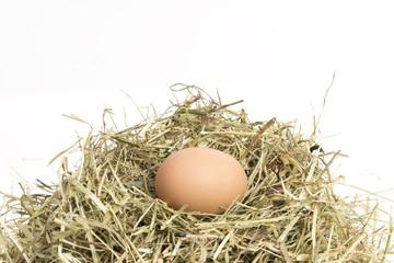 Ostern, Ei im Korb