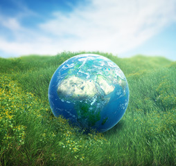 Earth in a green  field of grass