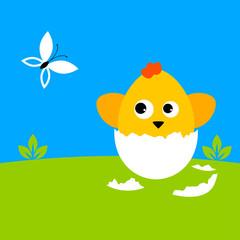 chicken_life