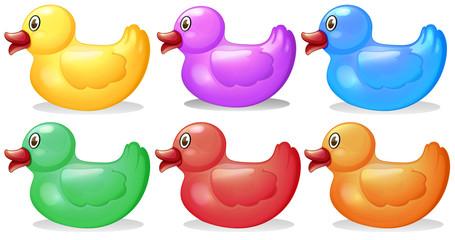 Six colorful rubber ducks