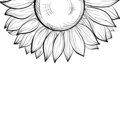 black and white background, floral border of sunflower