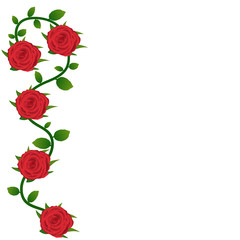 Red roses background for greeting card