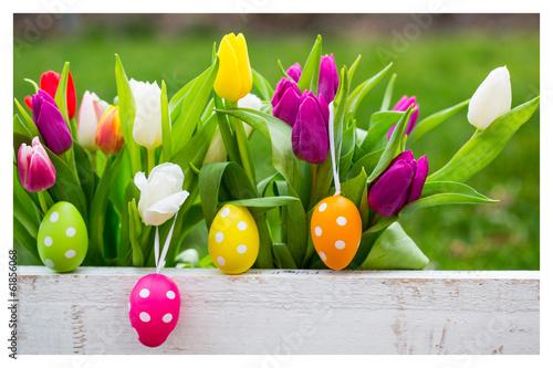 природа кролик цветы тюльпаны яйца пасха  № 271758 загрузить