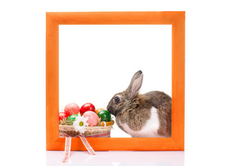 Easter bunny inside painted red wooden frame