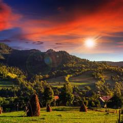 field near home at sunset