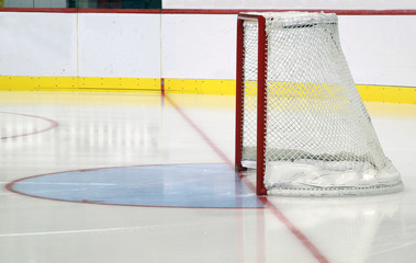 Porta hockey  con balaustra