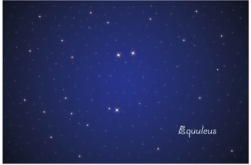 Constellation Equuleus