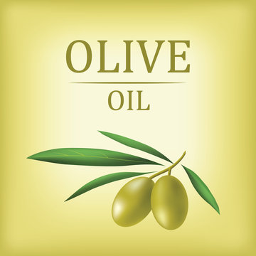 Vector olive oil. Decorative olive branch. For label, pack.