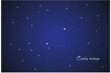 Constellation Canis minor