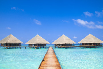 Maldives Dock with Crystal Clear Water