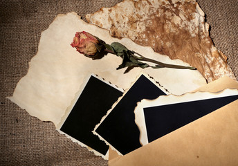 Composition with blank old photos, paper, letters