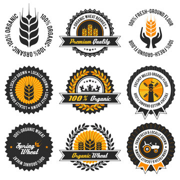 organic wheat label set with modern, vintage elements