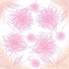 Pink Background with peony. Vector illustration