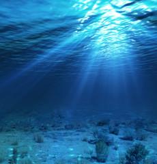 Poster Bleu nuit underwater landscape and backdrop with algae