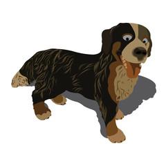 Vector illustration of dog