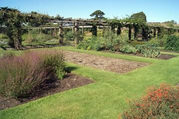Dukes Garden, Kew gardens, london, england