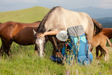 Hiker is waching horses in mountains