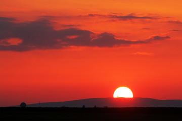 Fototapete - Orange - red sunset over horizont